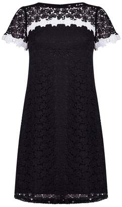 Adrianna Papell Ditsy Fl Lace Shift Dress