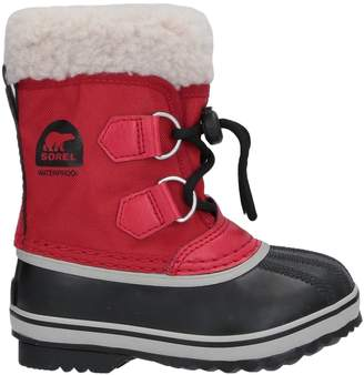 Sorel Ankle boots - Item 11710405RA