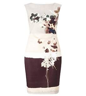 Phase Eight Rai Print Dress