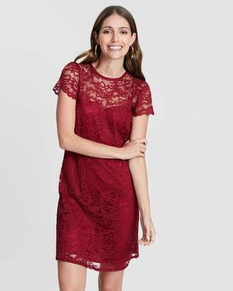 Dorothy Perkins Lace Short Sleeve Dress