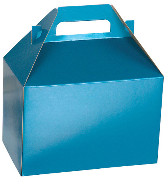Container Store Large Gable Box Blue Shimmer