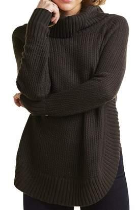Mud Pie Tobi Turtleneck Sweater