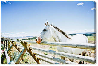 "Oliver Gal Cassandra Eldridge - Gracie The Horse Canvas Art, 45"" x 30"""