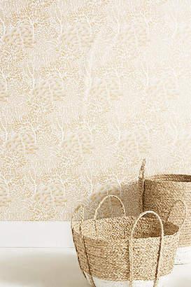 DwellStudio Sprouted Shrubs Wallpaper
