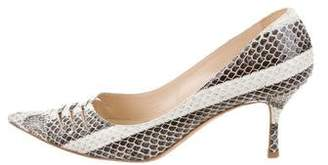 Jimmy Choo Snakeskin Pointed-Toe Pumps