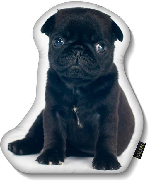 Black Pug Puppy Throw Pillow