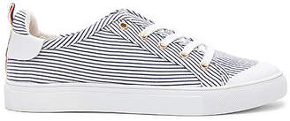 Jaggar Lace Me Up Stripe Sneaker