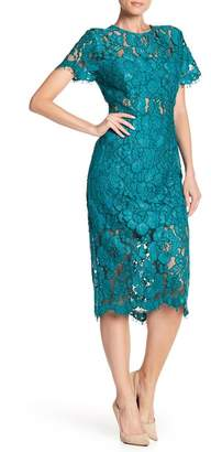 NSR Short Sleeve Lace Fitted Midi Dress