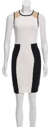 Torn By Ronny Kobo Sleeveless Knit Dress