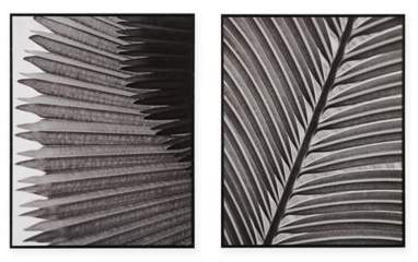 Madison ParkTM Palm Fronds Deco Box Photo Print in Black