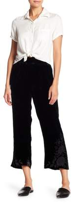 Johnny Was Magdalene Embroidered Velvet Cropped Palazzo Pants