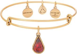 Alex and Ani Goldtone Crystal Charm Bangle