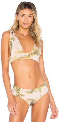Cali Dreaming Gaia Bikini Top