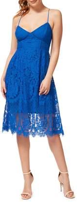 Dex Lace Cotton Blend Fit Flare Dress