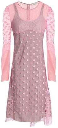 Nina Ricci Lace-Trimmed Embroidered Point D'esprit Dress