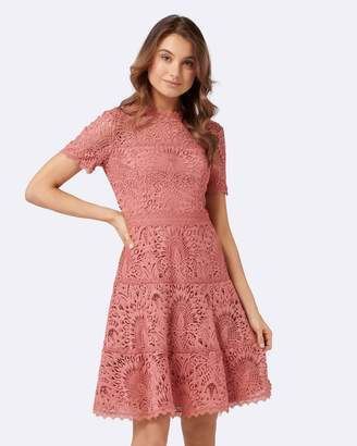 Forever New Jenni Lace Prom Dress