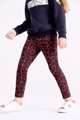 Next Girls Berry Animal Print Skinny Jeans (3-16yrs) - Purple