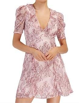 Keepsake Hold On Lace Dress