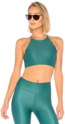 Chill by Will Riley Sports Bra