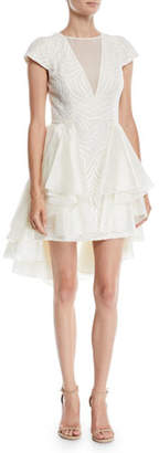 Halston Cap-Sleeve Lace Dress w/ Skirt Overlay