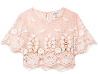 Miguelina Lula Cropped Embroidered Crocheted Cotton Top - Blush