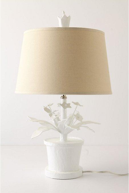 Primrose Lamp