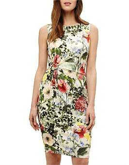 Phase Eight Evangelie Floral Dress