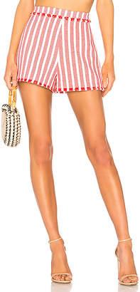 Alexis Terra Shorts