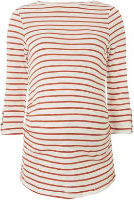 Dorothy Perkins Womens **Maternity Rust Striped Button Tab T