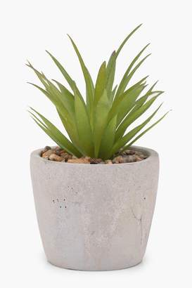 boohoo Ceramic Potted Faux Plant