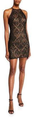 SHO Sleeveless Corded Lace Mini Dress