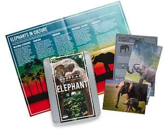 Gift Republic Adopt An Elephant