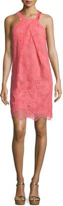 Trina Turk Felisha Sleeveless Floral Lace Shift Dress, Pink $298 thestylecure.com