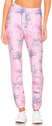 Wildfox Couture Pink Paradise Knox Sweatpant
