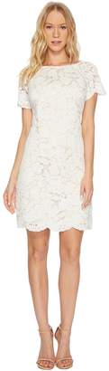Vince Camuto Lace Shift Dress with Scallop Details At Hem Women's Dress