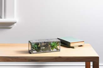 Sheridan Aliah Glass Display Box