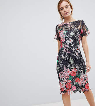 Paper Dolls Petite All Over Floral Printed Lace Pencil Dress