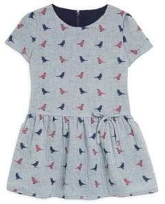 Isabel Garreton Toddler's & Little Girl's Cap Sleeve Drop Waist A-Line Dress