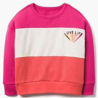 Gymboree Love Life Sweatshirt