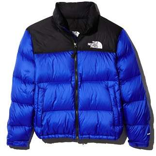 The North Face 1996 Retro Nupste Down Jacket