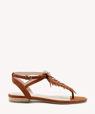 Sole Society Women's Mara T Strap Flat Sandals Caramel Size 5 Suede From