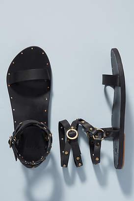 beek Beek Jaybird Gladiator Sandals