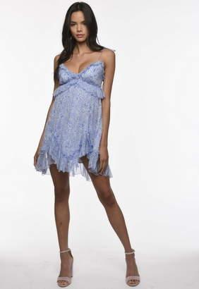Karina Grimaldi Saralyn Print Mini Dress