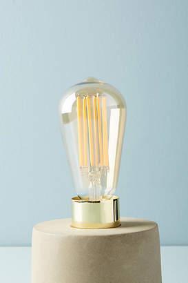 Tala Squirrel 3W LED Bulb