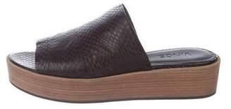 Vince Snakeskin Slide Sandals