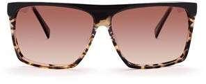 Am Eyewear Cobsey Black Demi Sunglasses