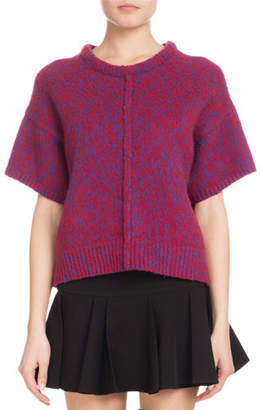 Chloé Short-Sleeve Marled Brushed Bicolor Wool-Cashmere Sweater