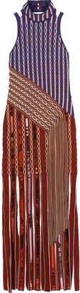 Peter Pilotto Fringed Embellished Jacquard-knit Maxi Dress