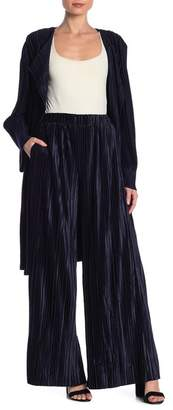 J.o.a. Accordion Pleated Velvet Pants