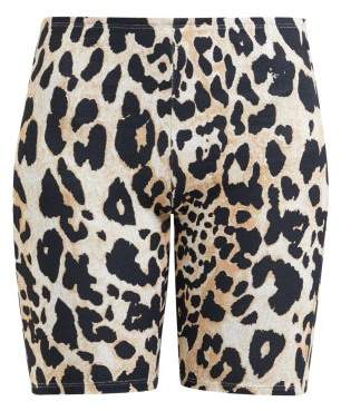 Paco Rabanne Leopard Print Stretch Jersey Cycling Shorts - Womens - Leopard